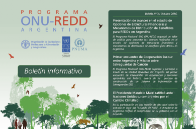 SinergiAr en el Programa ONU REDD Argentina