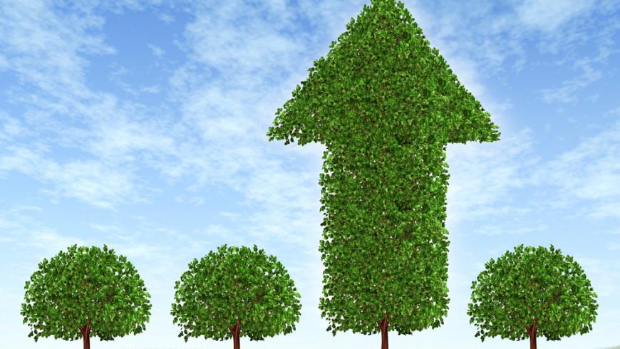 Los Bonos Verdes: un instrumento de financiamiento cada vez más importante para la lucha contra el cambio climático