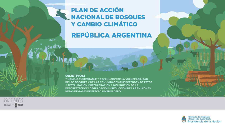Enfoque Nacional de Salvaguardas REDD+ de la Argentina