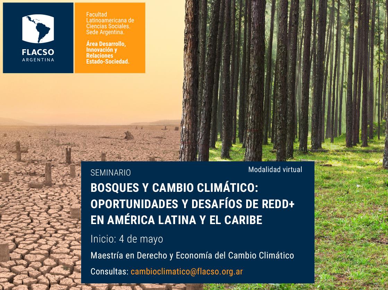 Abierta la inscripción al curso virtual «Bosques y Cambio Climático», de FLACSO Argentina