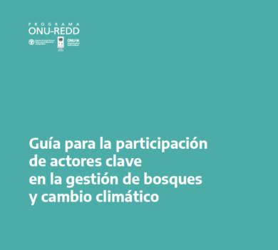 Se publicó la «Guía para la participación de actores clave en la gestión de bosques y cambio climático» de la Argentina